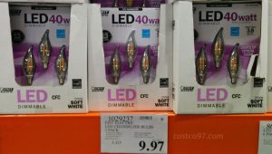 FEIT LED Bulbs