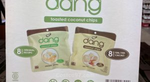 Dang Toasted Coconut Chips - 1095349