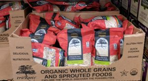 organic sprouted rice & quinoa - 579197